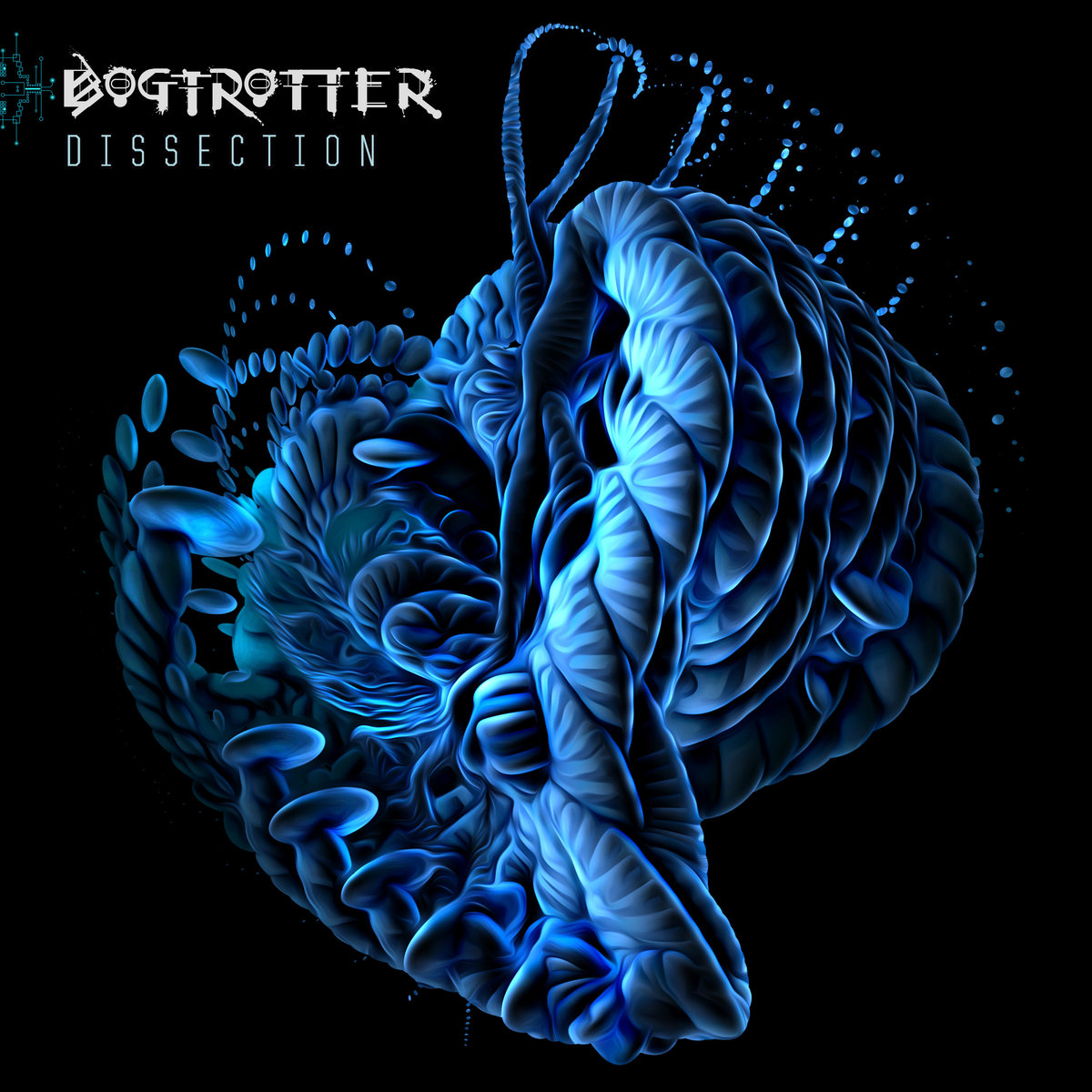 Bogtrotter - Dissection
