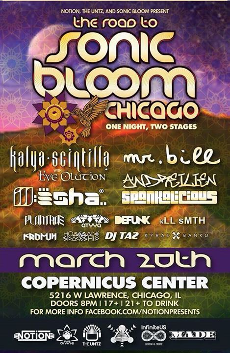 Road to Sonic Bloom - Chicago