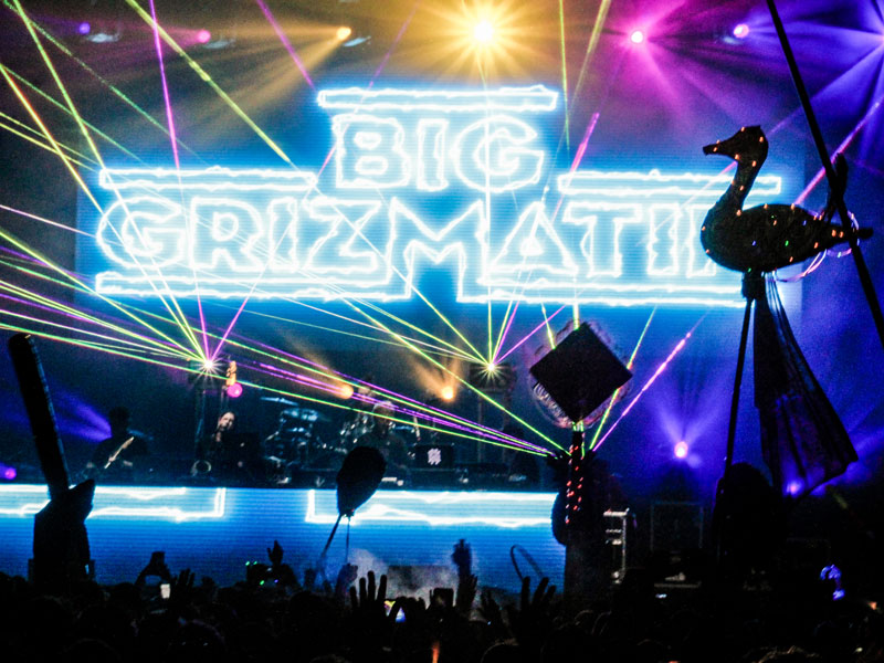 Big GrizMatik