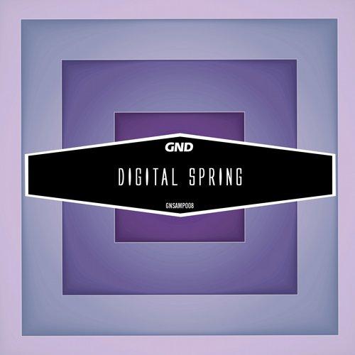 Album Art - Digital Spring