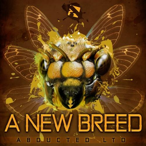 Album Art - A New Breed