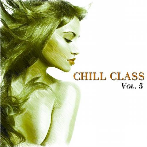 Chill Class, Vol. 5 (A Fine Selection of Chill) Album Art