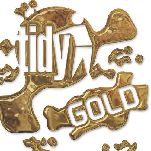 Album Art - Tidy Gold