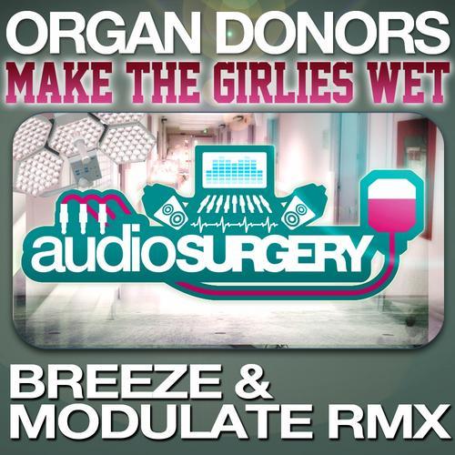 Album Art - Make The Girlies Wet