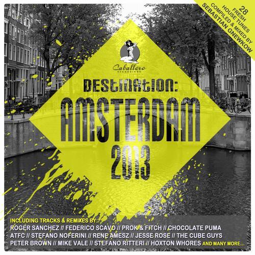 Destination: Amsterdam 2013 Album Art