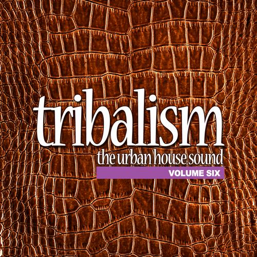 Album Art - Tribalism, Vol.6 - The Urban House Sound