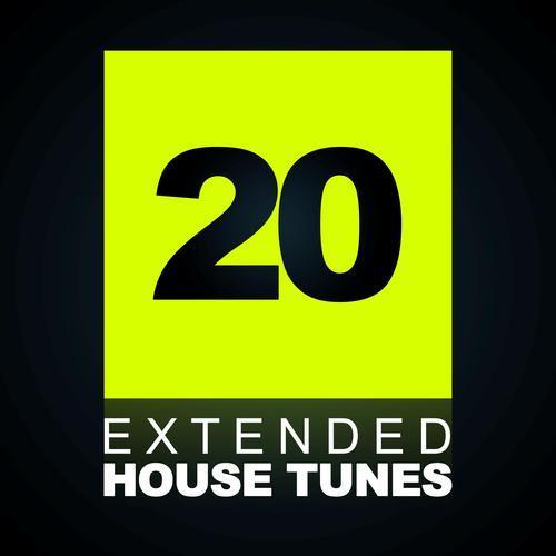 Album Art - 20 Extended House Tunes