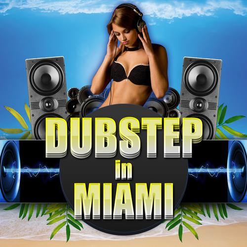 Dubstep in Miami Album