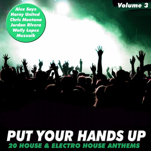 Album Art - Put Your Hands Up Vol. 3 - 20 House & Electro Anthems