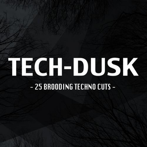 Tech-Dusk: 25 Brooding Techno Cuts Album Art