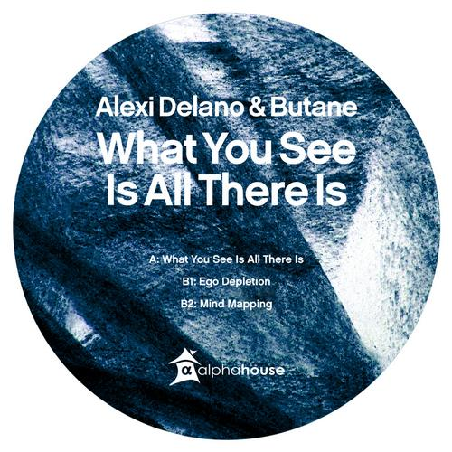 Album Art - What You See Is All There Is