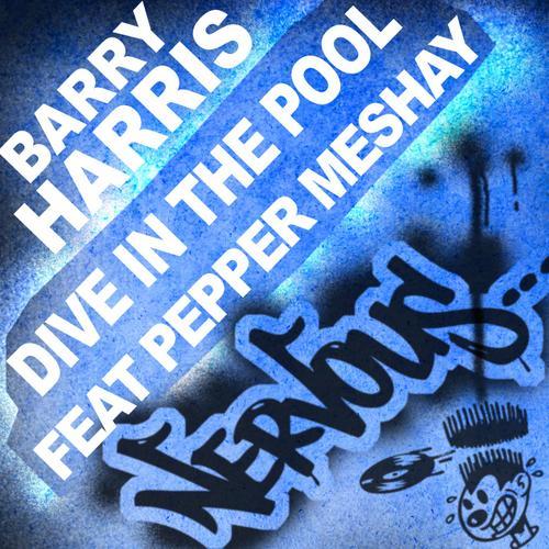 Album Art - Dive In The Pool 2010