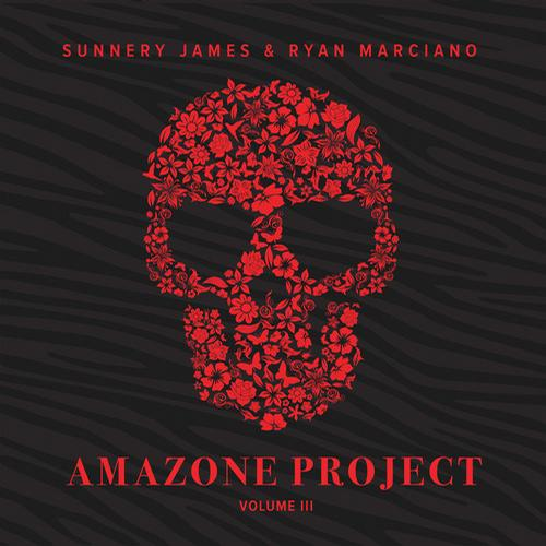 Album Art - Amazone Project Vol. 3