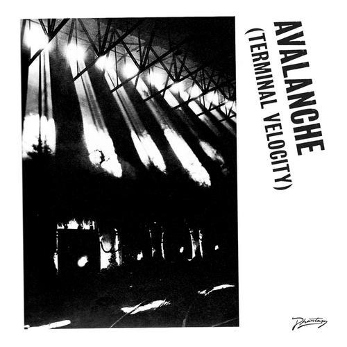 Album Art - Avalanche (Terminal Velocity)