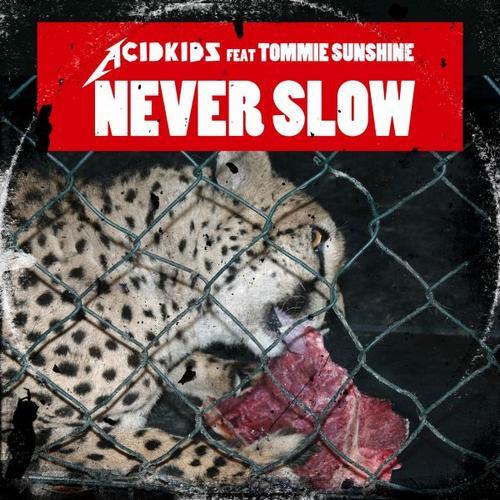 Album Art - Never Slow