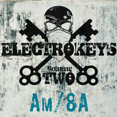 Album Art - Electro Keys Am/8a Vol 2