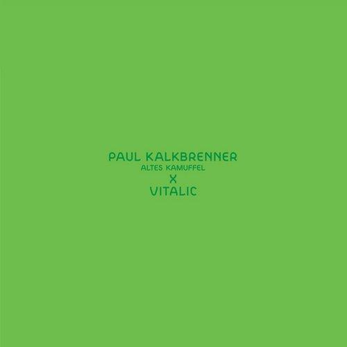 Album Art - Altes Kamuffel (Vitalic Remix)