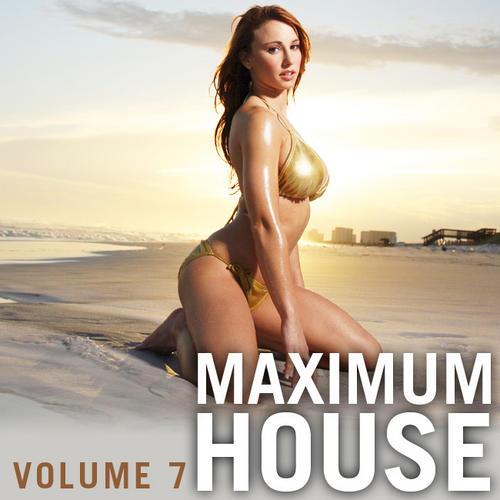 Album Art - Maximum House Vol. 7