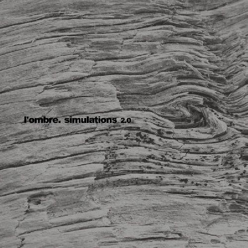 Album Art - Simulations 2.0