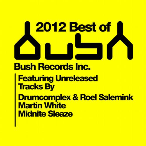 Album Art - Best Of Bush 2012