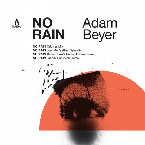 Album Art - No Rain