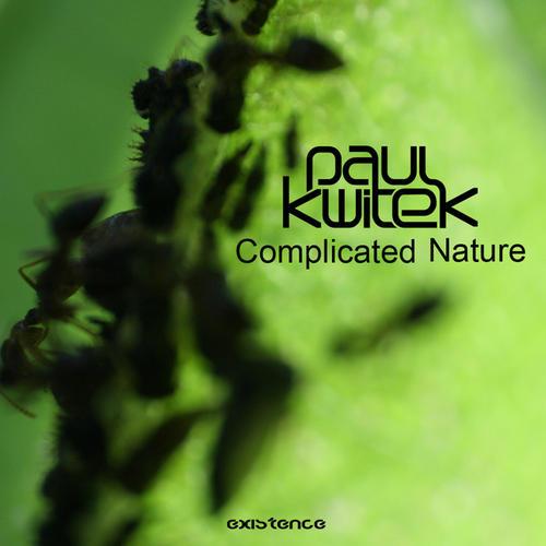 Album Art - Complicated Nature