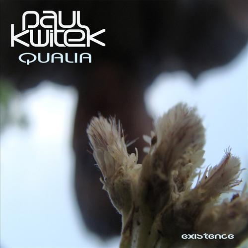Album Art - Qualia
