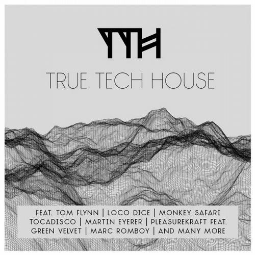 Album Art - True Tech House