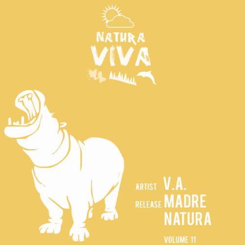 Album Art - Madre Natura Volume 11