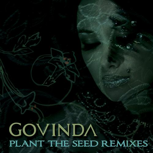 Album Art - Plant the Seed Remixes