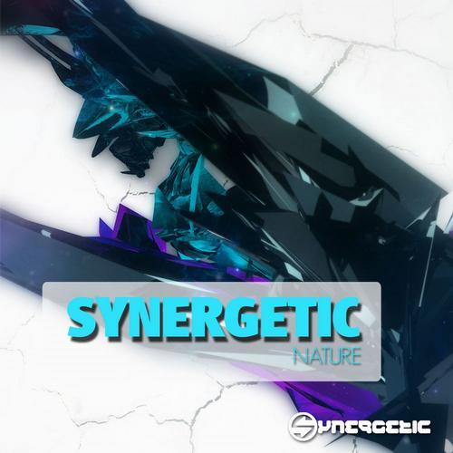Album Art - Synergetic Nature