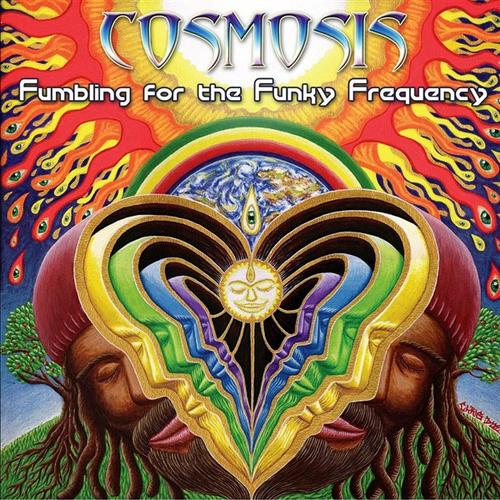 Album Art - Fumbling For The Funky Frequency