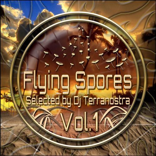 Album Art - Flying Spores Vol. 1