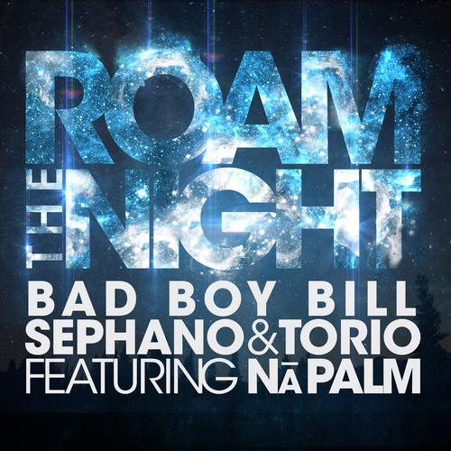Album Art - Roam The Night