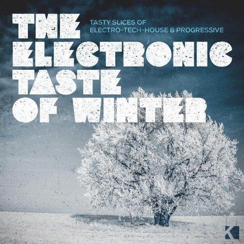Album Art - The Electronic Taste of Winter (Tasty Slices of Electro-Tech-House & Progressive)