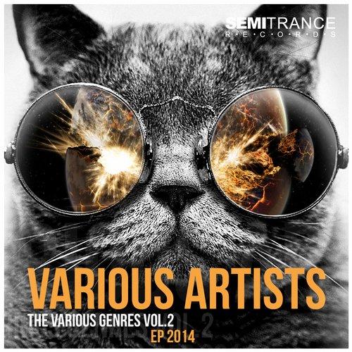 Album Art - The Various Genres, Vol. 2 - Ep 2014