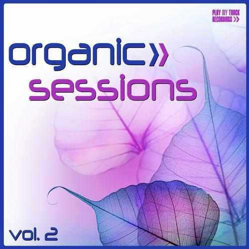 Album Art - Organic Sessions, Vol. 2