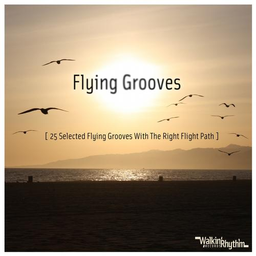 Album Art - Flying Grooves - 25 Selected Flying Grooves With the Right Flight Path