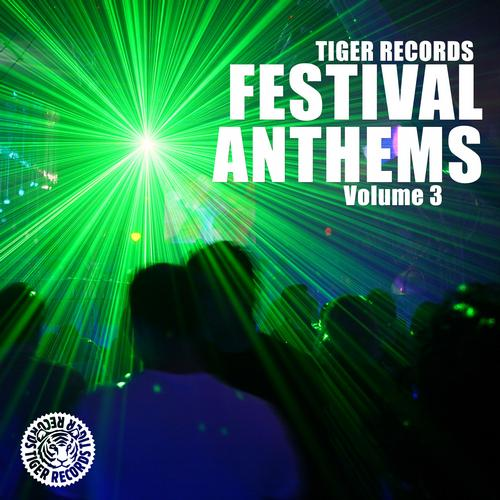 Album Art - Festival Anthems (Vol. 3)