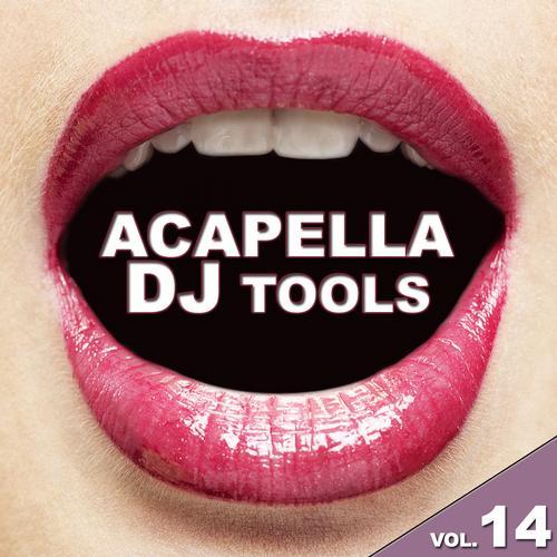 Album Art - Acapella DJ Tools, Vol. 14