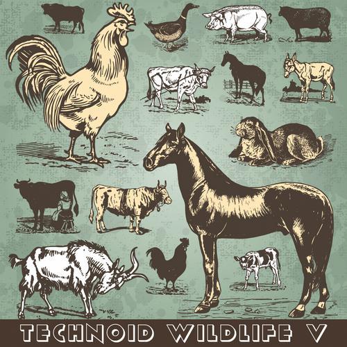 Album Art - Technoid Wildlife V