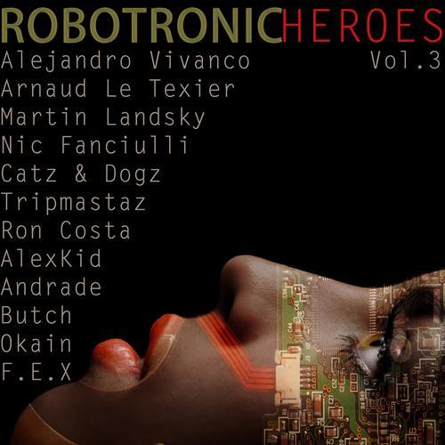 Robotronic Heroes Vol.3 Album Art