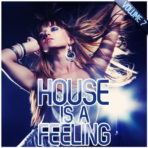Album Art - House Is A Feeling Vol. 7