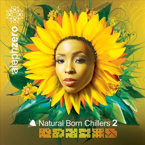 Album Art - Natural Born Chillers 2