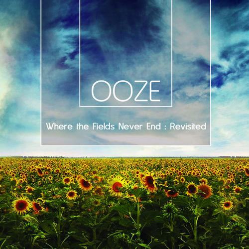 Album Art - Where the Fields Never End: Revisited