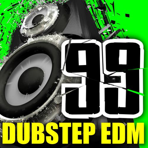 Album Art - 99 Dubstep EDM