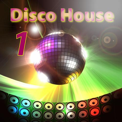Album Art - Disco House Volumem 1