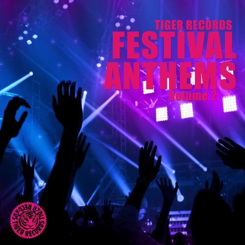 Album Art - Festival Anthems (Vol. 2)