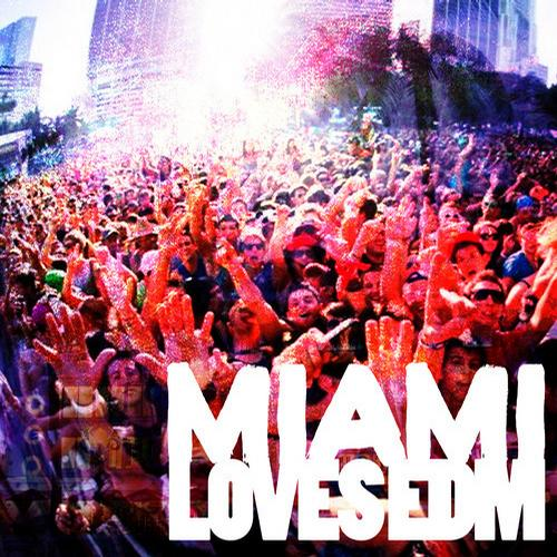 Album Art - Miami Loves EDM