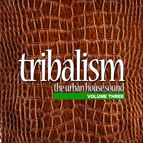 Album Art - Tribalism Vol.3 - The Urban House Sound